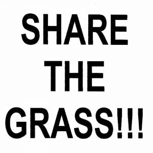 life is music.. Share the Grass!!!